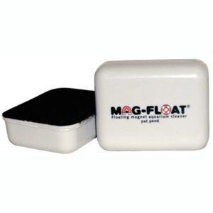 algenmagneet-zelfdrijvend-large-80x65x55-mm-blister