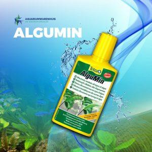 Algumin voor in het aquarium tegen alle type algen