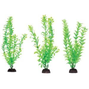 penn-plax-plant-bagged-style-1-medium-8-six-pieces-pbp1m