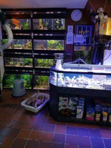 aquarium winkel andere bak