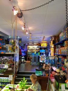 aquarium winkel bezig