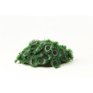 TMC NATUREFORM CORAL-BUTTON POLYP COLONY GREEN 8.5x6.5x5 CM