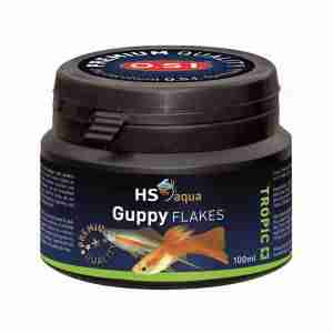 HS AQUA GUPPY FLAKES 100 ML