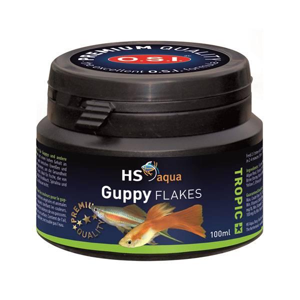 HS AQUA GUPPY FLAKES 100 ML